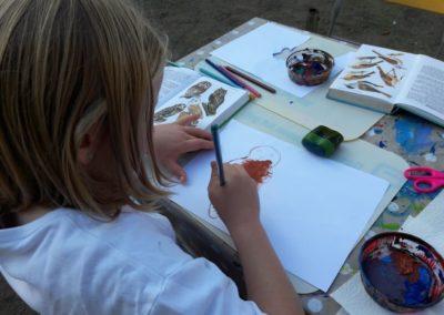 Charlotte malt einen Waldkauz. Den könnt ihr im Naturführer ganz oben links erkennen.
