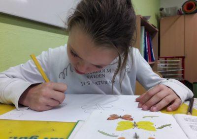 Fiona zeichnet gerade einen Zitronenfalter.